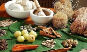 Tanaman sumber dari obat herbal1